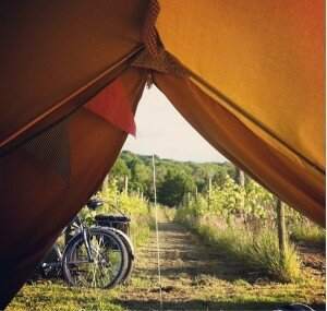 View from a Bell tent